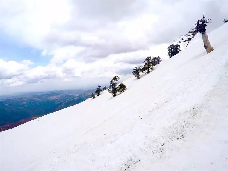冬天怎么玩系列——去希腊滑雪?!