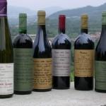 意大利品酒之旅 第6天