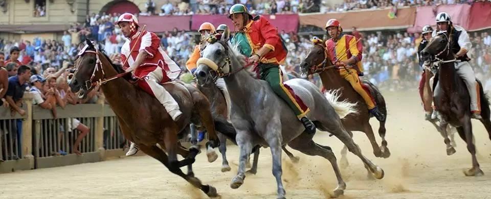 为中世纪赛马节喝彩