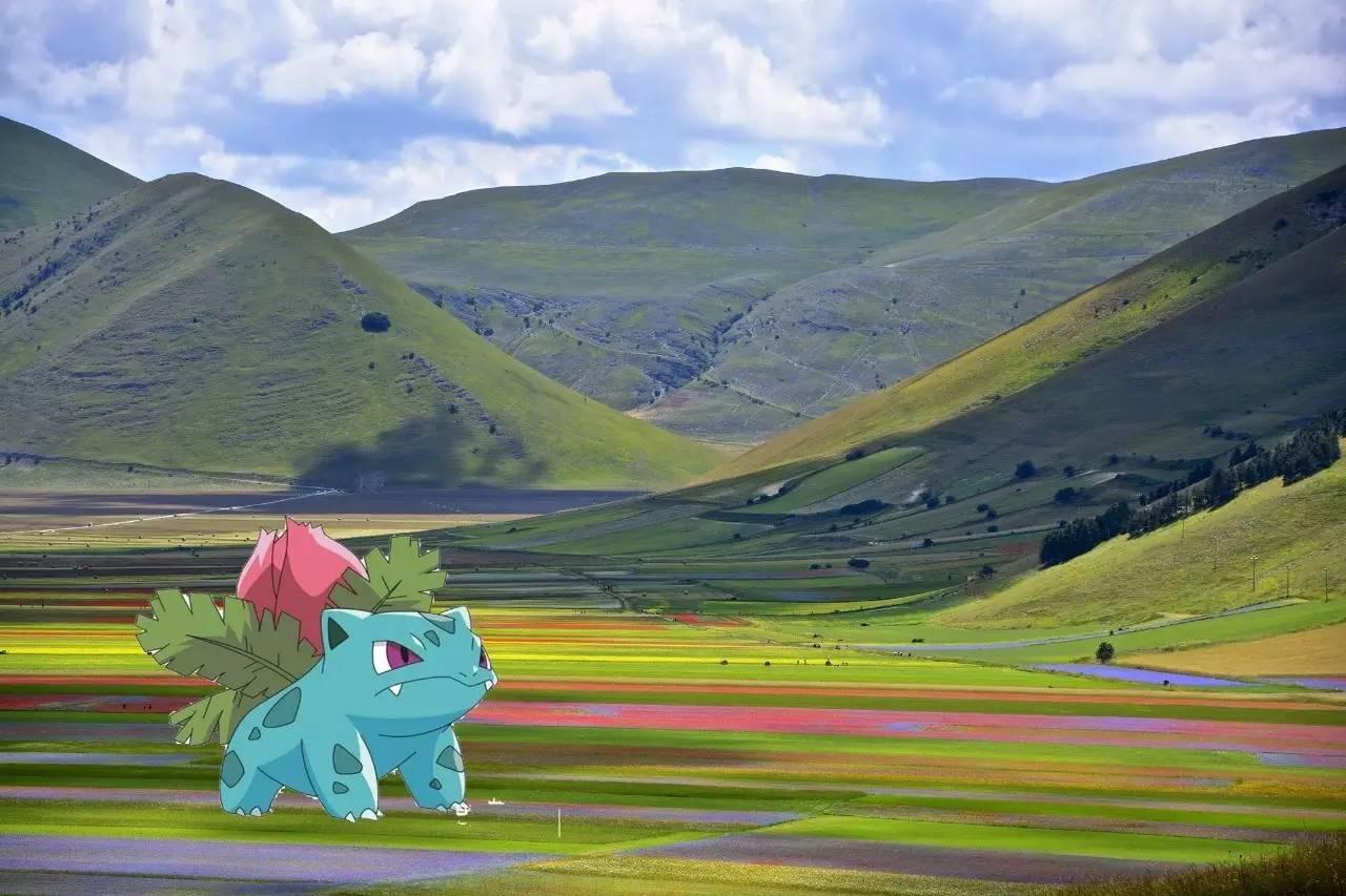 pokemon_16