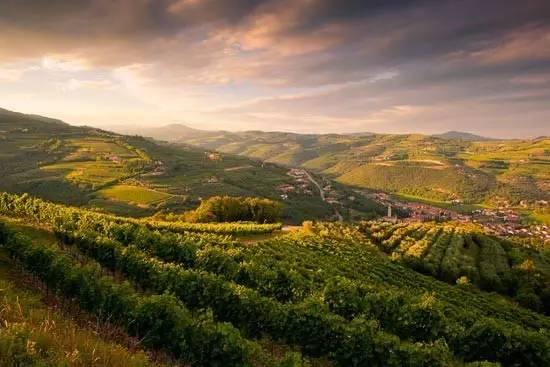 瓦尔波利切拉西边宽阔美丽的加尔达湖和北边阿尔卑斯山上吹来的清凉的微风