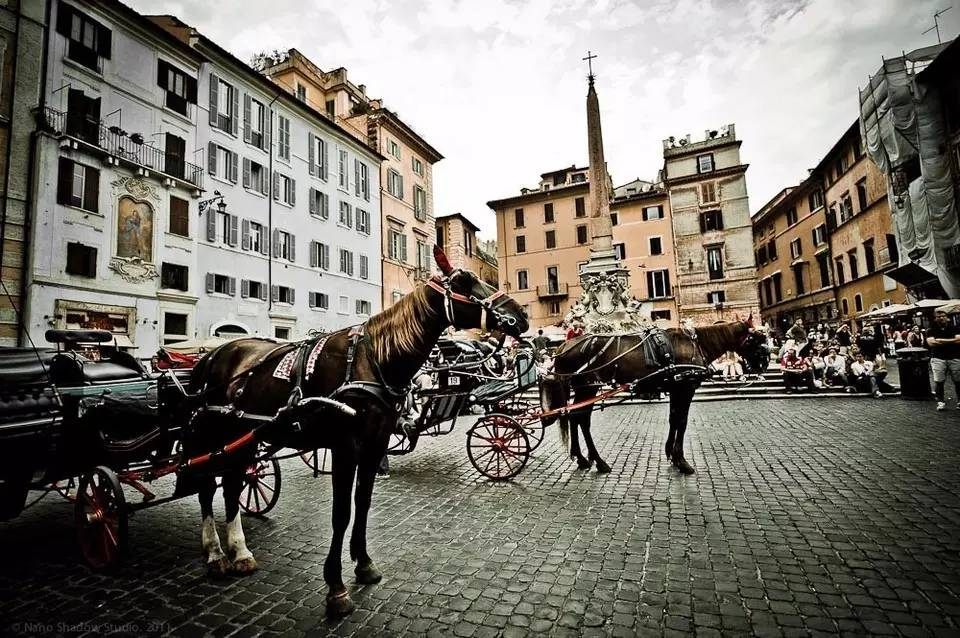 古典马车慢游罗马