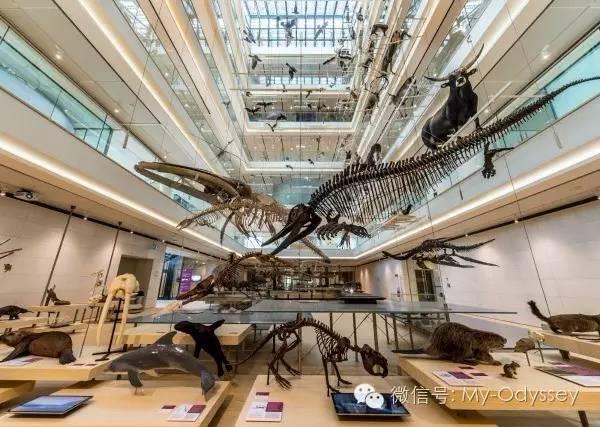 特伦托自然博物馆