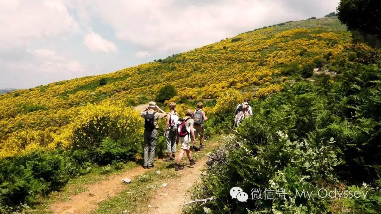 阿卡迪亚的徒步游览