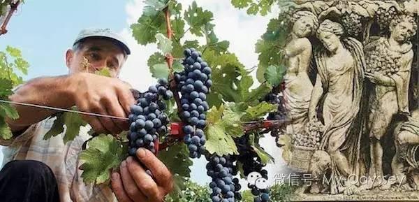 希腊的秋天以酒神崇拜为主题的节日