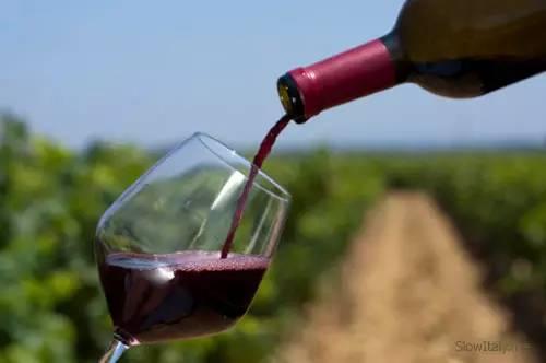 冬季希腊·新春之旅 奈迈阿葡萄酒品鉴