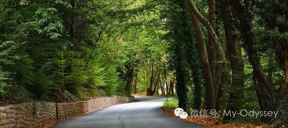 卡尔派尼西漫步在林间小路或峡谷浅滩