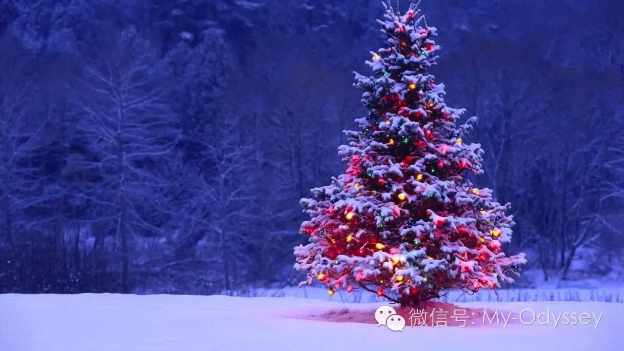 白色欧洲,红色圣诞之旅