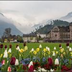 意大利&瑞士·新春之旅 第8天