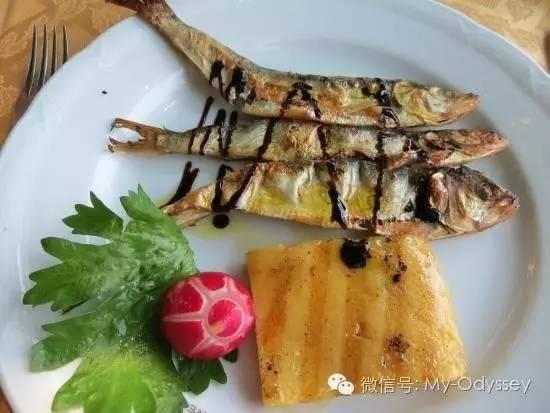 Missoltini鱼
