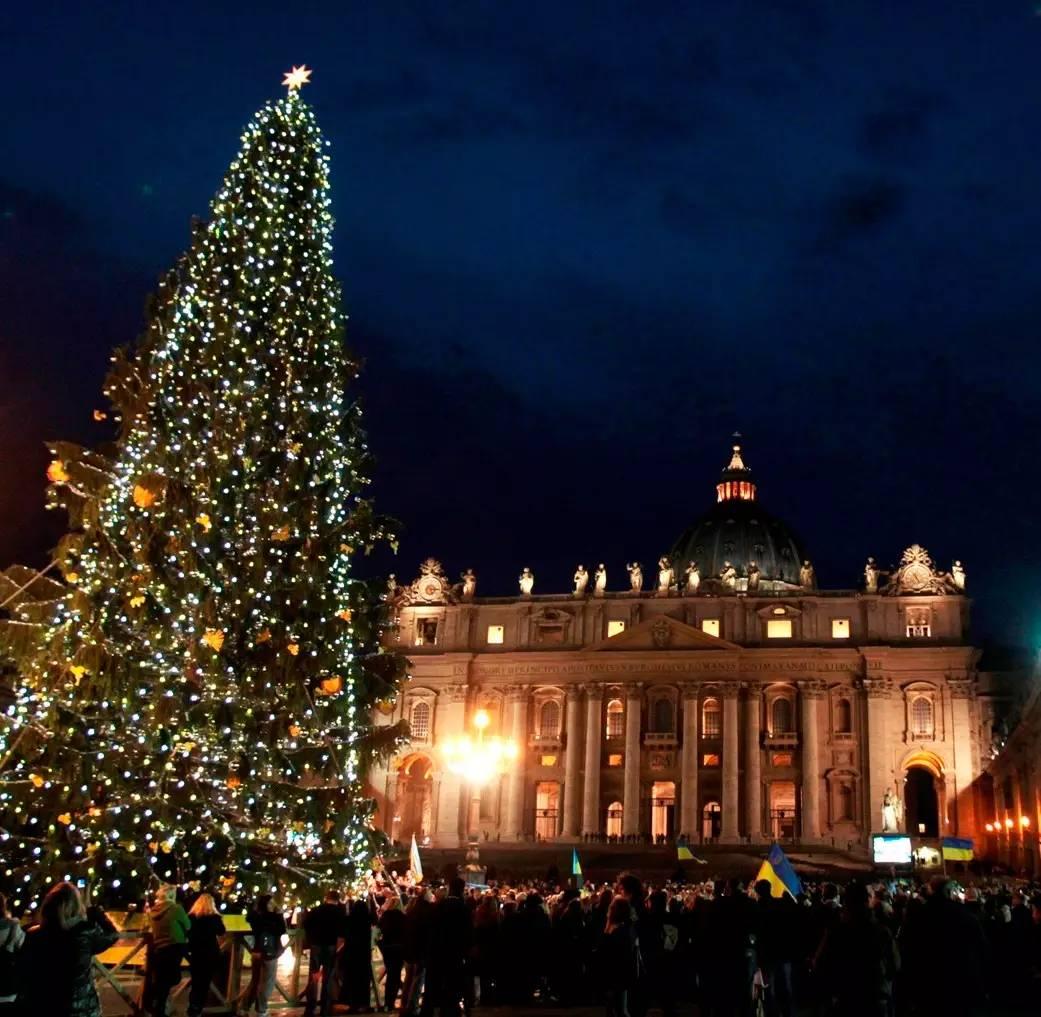 梵蒂冈圣诞_圣诞树