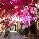 希腊中世纪古城蜜月之旅 第3天