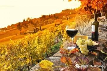 这座意大利梦幻庄园——满足你的所有想象